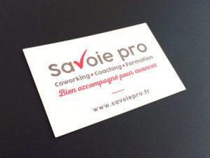 Savoie pro